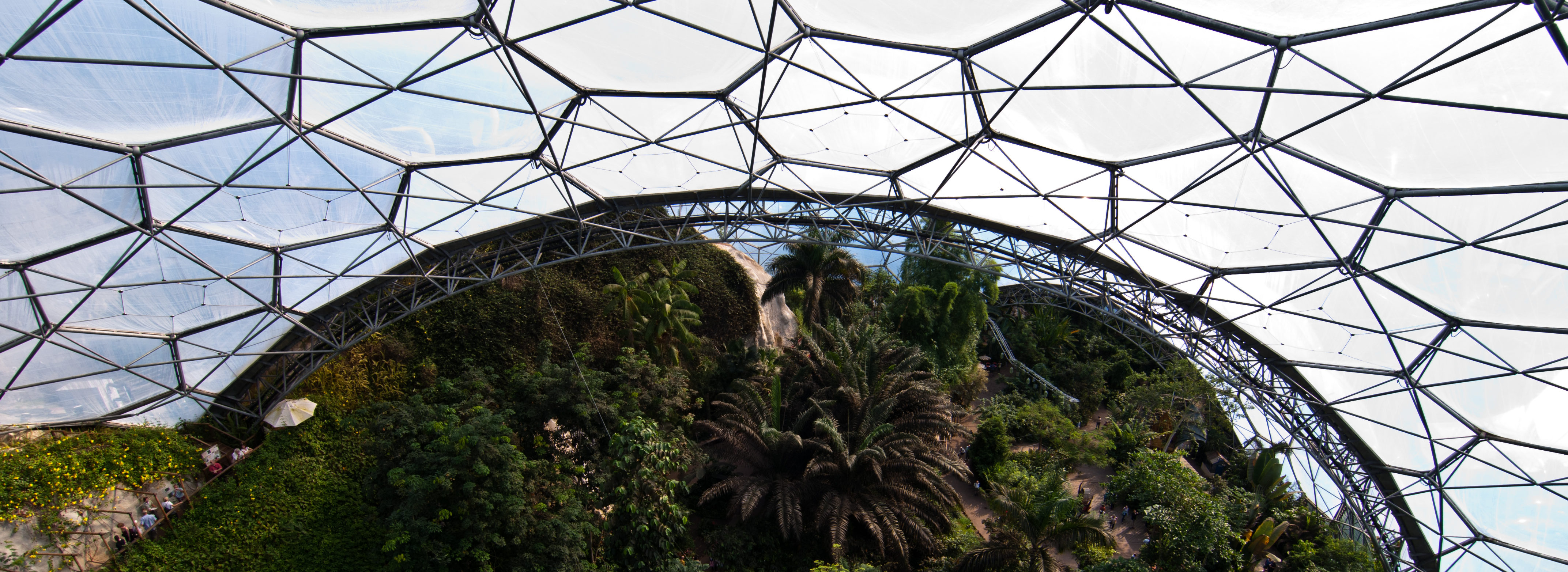 UK Climate Services booklet. Photo cred - Tim Parkinson, View from platform @ Eden Project, Cornwall